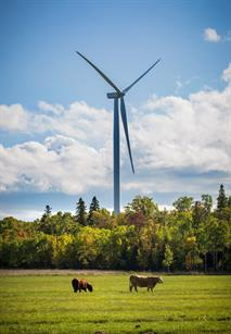 Most of GE's turbines are installed in Ontario