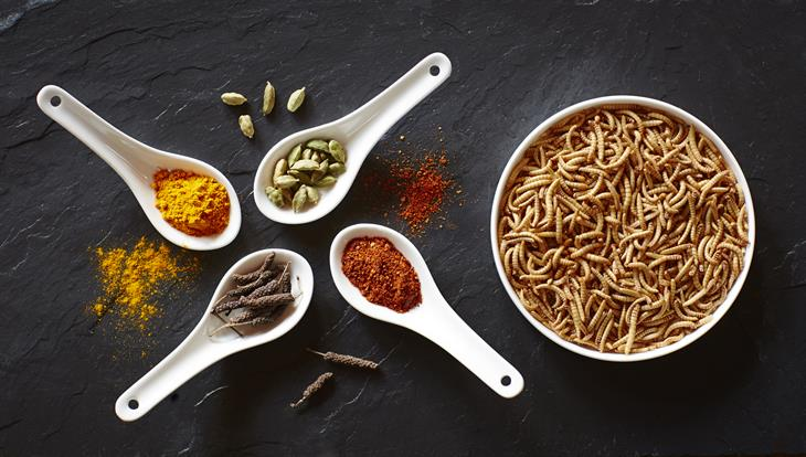 Spices and worms