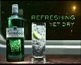 Gordon's Gin\Bartle Bogle Hegarty