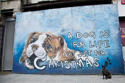 Jim Vision's street art collaboration with Dogs Trust
