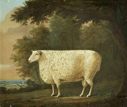 J. Digby Curtus, Robert Bakewell's 'Two Pounder', 1790, The Royal Agricultural College Collection.tiff.jpg