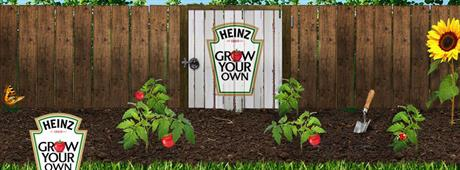 heinz-grow-your-own.jpg