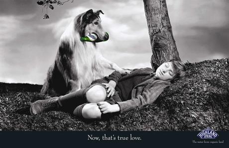 _Lassie_800px.jpg