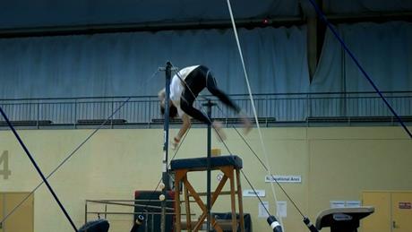 Frank_gymnast20.jpg