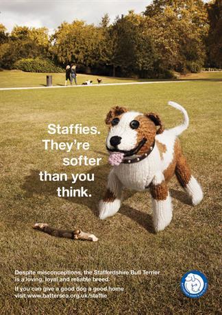 staffies800.jpg
