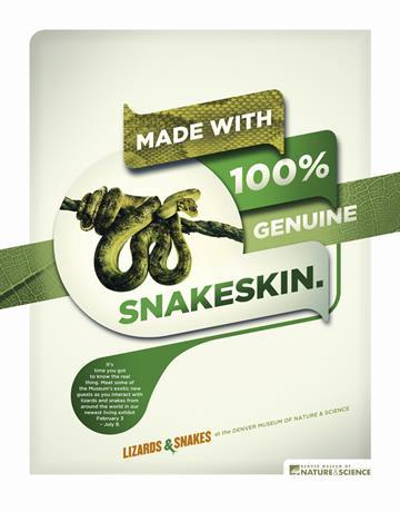 Snakeskin.jpg