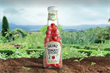 Heinz motivates army of growers with promise of DIY ketchup