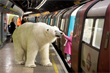 Giant polar bear unleashed in London for Sky Atlantic stunt