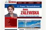 Analysis: Polish MPs hit election trail with anti-wind call