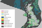 UK bird charity calls                                                on renewables priority