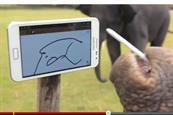 Daily Diary - Smart elephant