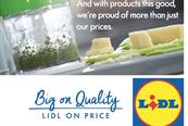 Lidl to open 60 stores a year