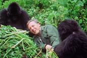"BBC ""Attenborough at 90"" by BBC Creative"