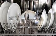 Sector Insight: Dishwashing detergents