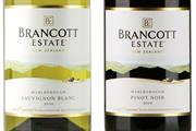 Pernod Ricard unifies wines under Brancott identity
