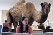 Campaign Viral Chart: Happy camel leads upbeat chart