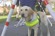 Rapp swipes Guide Dog task from TDA