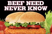 Burger King: Tendercrisp chicken burger campaign
