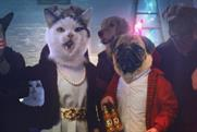 J20: rolls out 'cats and dogs' campaign