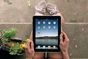 Apple launch of the iPad in April last year was one of the biggest innovations ever to hit the computer market