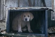 Budweiser: Super Bowl XLIX ad tugs on the heartstrings