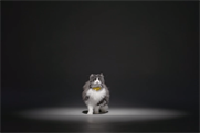 Catterbox listens to its wearer's miaows and translates them into human speech