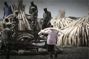 The cremation will see 105 tonnes of ivory destroyed