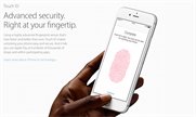 Apple CEO praised for rejecting FBI's request to build 'backdoor' into iPhone