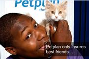 Petplan: appointment is anticipated before the end of the year