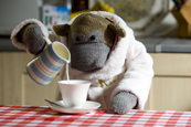 Mother ...latest PG Tips ad