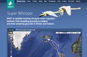 WWT: website designed by One Black Bear