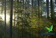 Center Parcs: #RealTweetWeek tweets sound of birdsong
