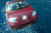 C3 ad: dolphins in the driving seat