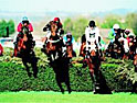 Grand National: William Hill to launch betting site