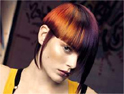 Wella: backing Trend Vision with Telegraph deal