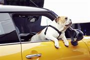 Spike: the British Bulldog features in Mini's latest ad campaign