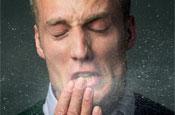 Swine flu: the public says don't panic