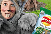 Walkers: squirrel flavour hits the shops
