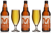 Morrisey and Fox: launch Blonde Ale