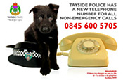 Tayside Police: apologise for ad