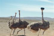 A hopeful ostrich takes flight in inspirational Samsung Galaxy S8 spot