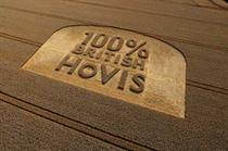 Hovis to use only British wheat in products
