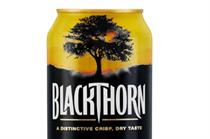 Gaymer's Cider relaunch sparks backlash by West Country loyalists