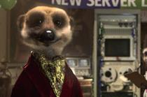 Meerkat character has more than half a million friends on Facebook