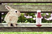 Innocent sales rocket over 35%, says Britvic Soft Drinks Report