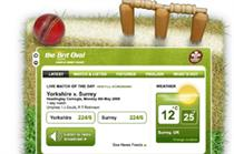Brit Oval launches cricket wicket widget