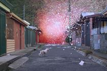 Petals burst forth from volcano to promote Sony's 4K TVs