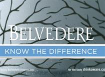 Belvedere ad banned for suggesting alcohol leads to a better night out