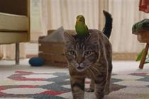 Freeview launches loving budgie and cat duet ad