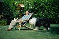 Dulux dog returns for 50th anniversary campaign
